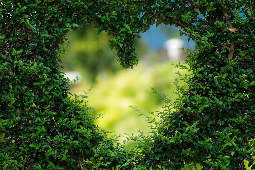Comment gérer un amour à distance